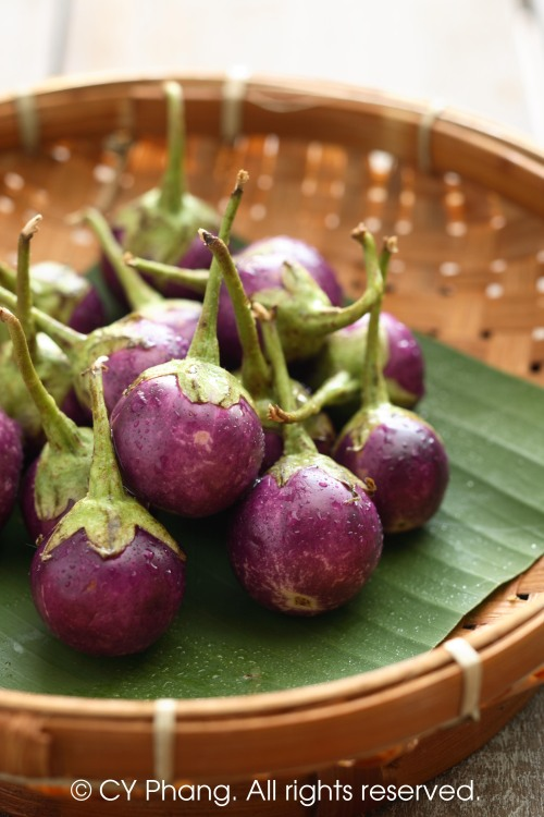 Mini eggplant-IMG_6758-custom copy