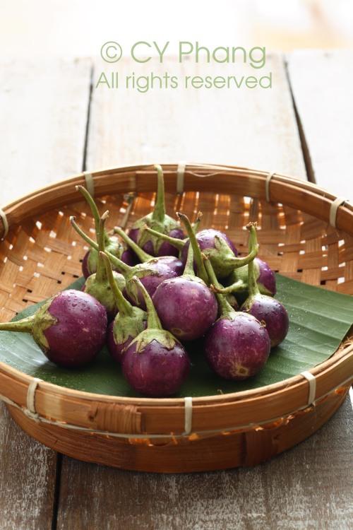 Mini eggplant-IMG_6769-custom copy