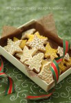 christmas cookies-white & yellow-IMG_9754-wm